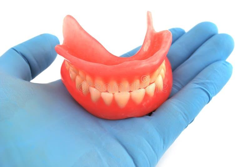 Dentiers à disposition photographie stock