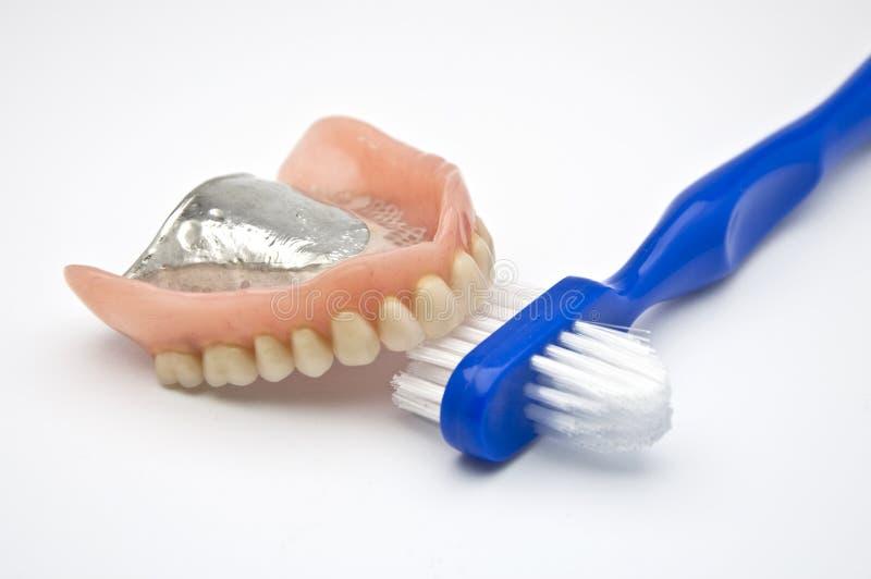 Dentiers avec le balai photographie stock