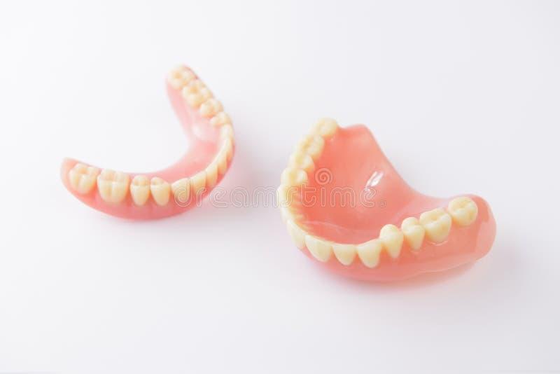 Dentiers sur le fond blanc photo stock