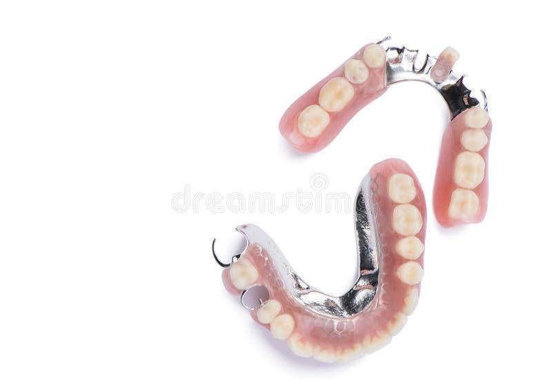 Dentiers sur le fond blanc image libre de droits