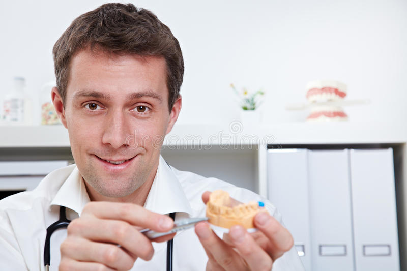 Dentist with dental cast royalty free stock photography