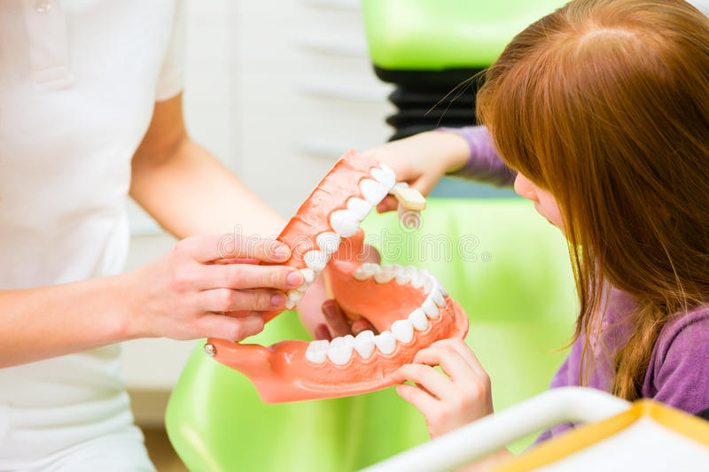 Dentist explaining girl cleaning tooth stock photography