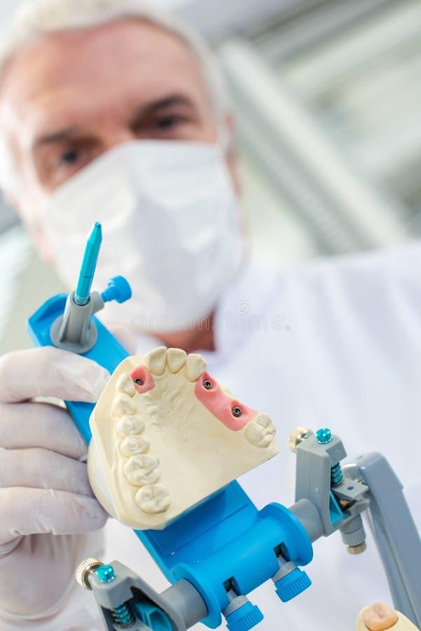 Dentist preparing dental mould stock photography