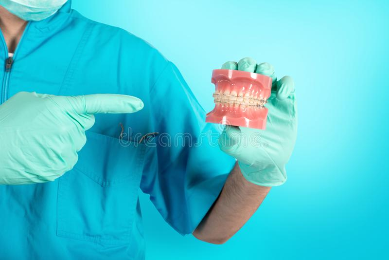 Dentist shows how to apply a brace. Anatomy, hold. Dentist doctor shows how to apply a brace royalty free stock photos