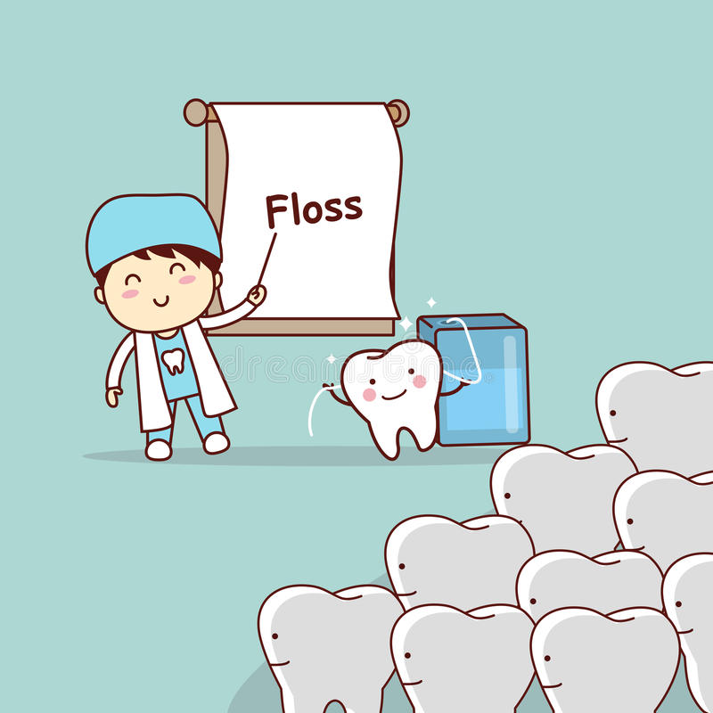 Dentist teach teeth use floss. Cartoon doctor or dentist teach teeth to use floss, great for dental care concept vector illustration