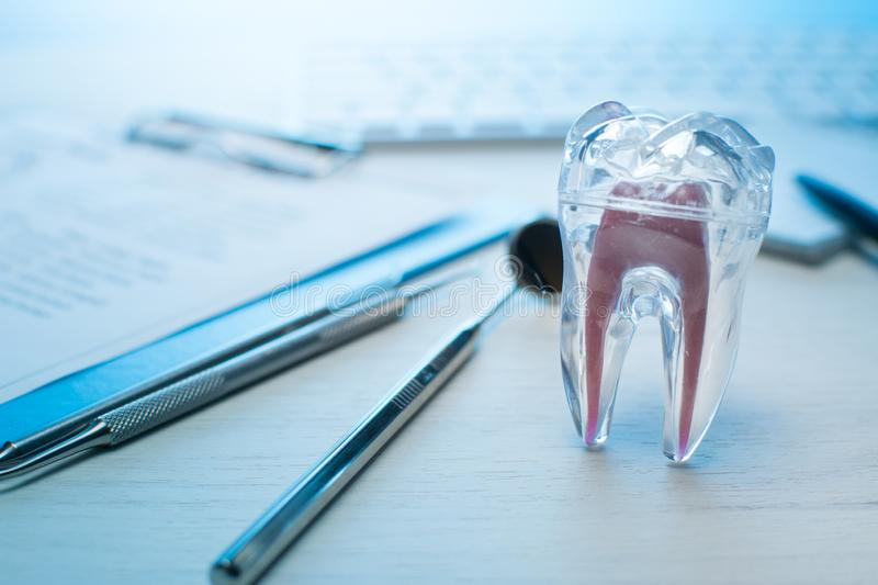 Dentist tools, tooth model on dentist table with computer keyboard. and notebook Dental probe, mirror and explorer, with copy spac. Dentist tools, tooth model on royalty free stock photography