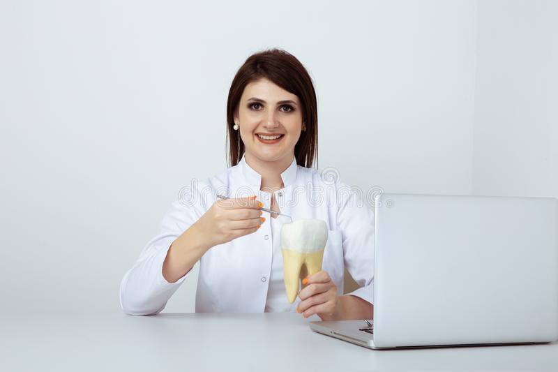 Dentist woman working sitting in office isolated with dental staff. stock photos