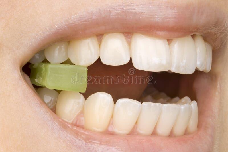 Dentista fotografia de stock