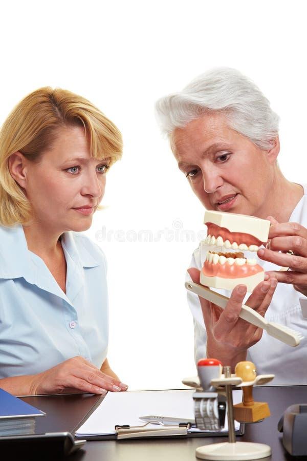 Dentista che spiega trattamento sopra immagini stock libere da diritti