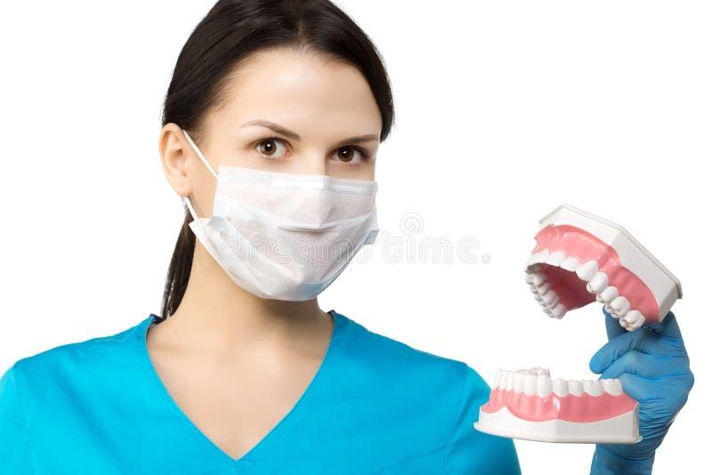 Dentista con gli strumenti Concetto di The del dentista di odontoiatria, imbiancante fotografie stock libere da diritti