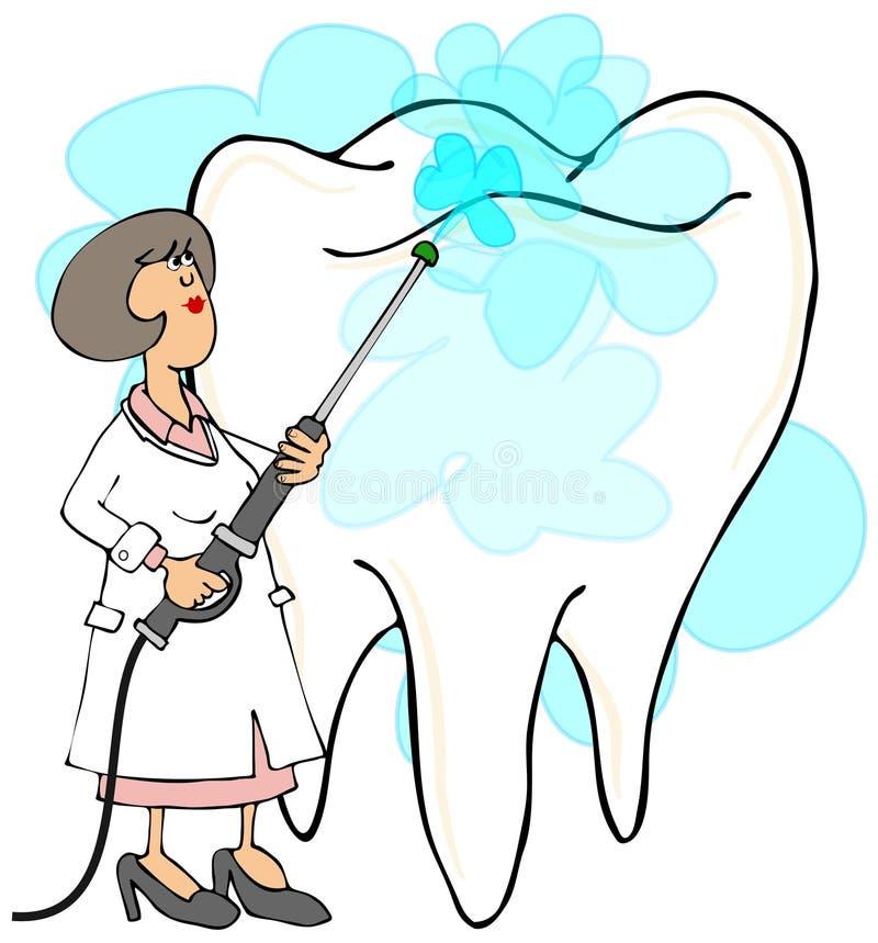Dentista de sexo femenino que limpia un diente ilustración del vector