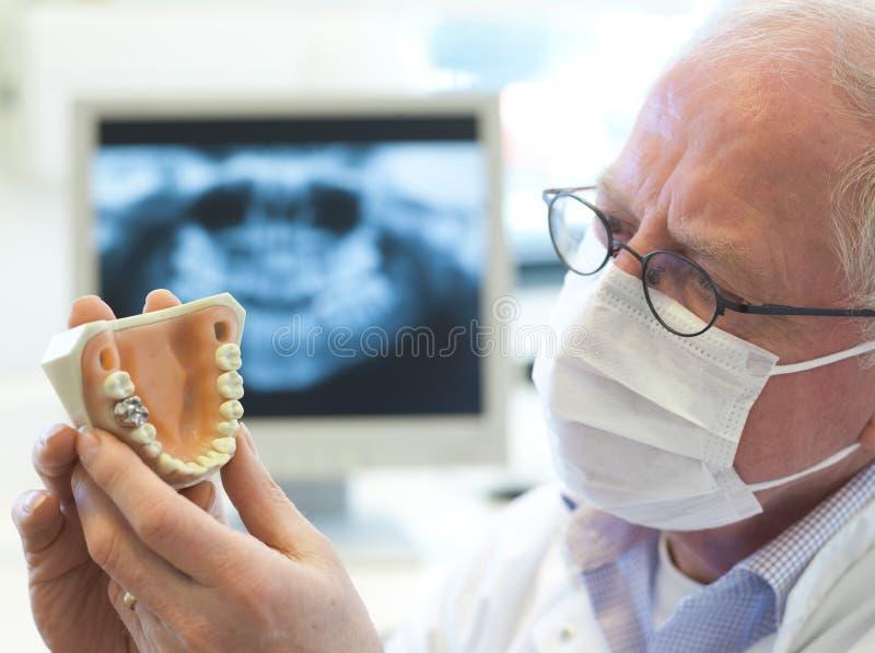 Dentista mayor imagen de archivo libre de regalías