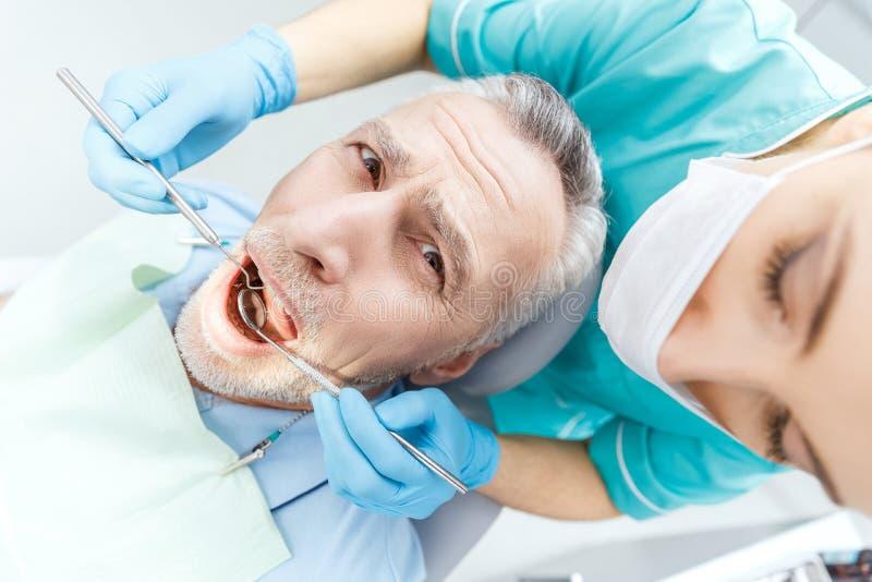 Dentista profissional que cura o paciente maduro assustado na clínica dental foto de stock royalty free