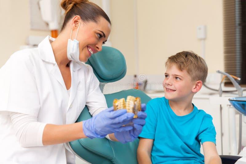 Dentista que explica el modelo de los dientes fotos de archivo