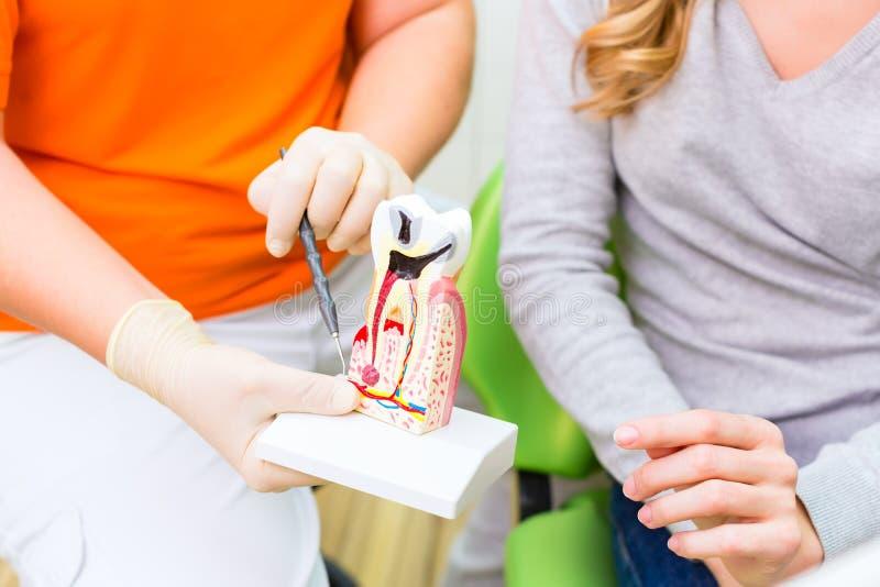 Dentista que explica terapia paciente fotografía de archivo libre de regalías