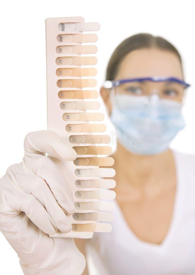 Dentista que sostiene la paleta para el color del diente, de entonado de colores y Teet fotos de archivo libres de regalías
