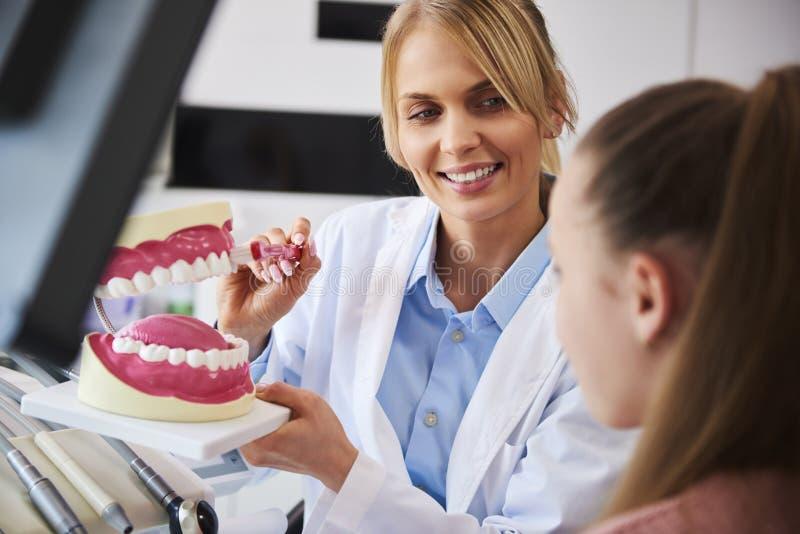 Dentista sonriente que muestra la manera apropiada de cepillar los dientes foto de archivo