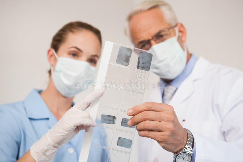 Dentista y ayudante que estudian radiografías imágenes de archivo libres de regalías