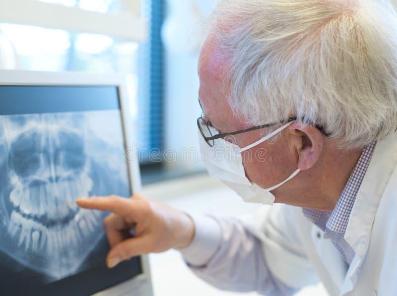 Dentiste aîné photographie stock libre de droits