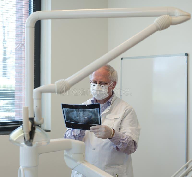 Dentiste avec le rayon X à disposition image libre de droits