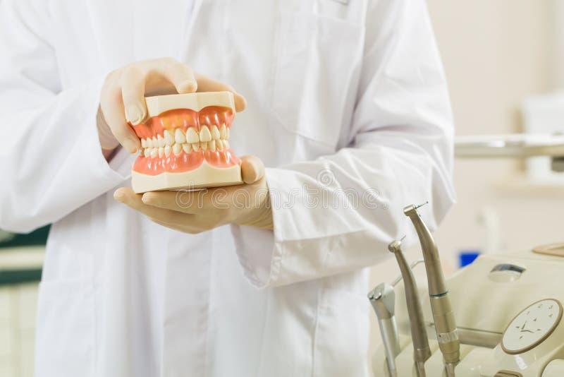 Dentiste dans sa chirurgie, il retient un dentier image stock