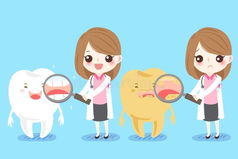 Dentiste de femme avec la dent illustration stock