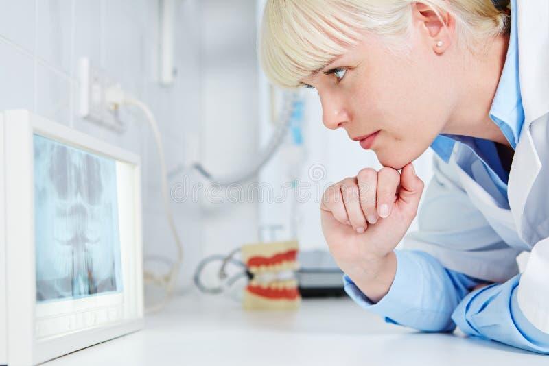 Dentiste regardant la radiographie panoramique photo stock