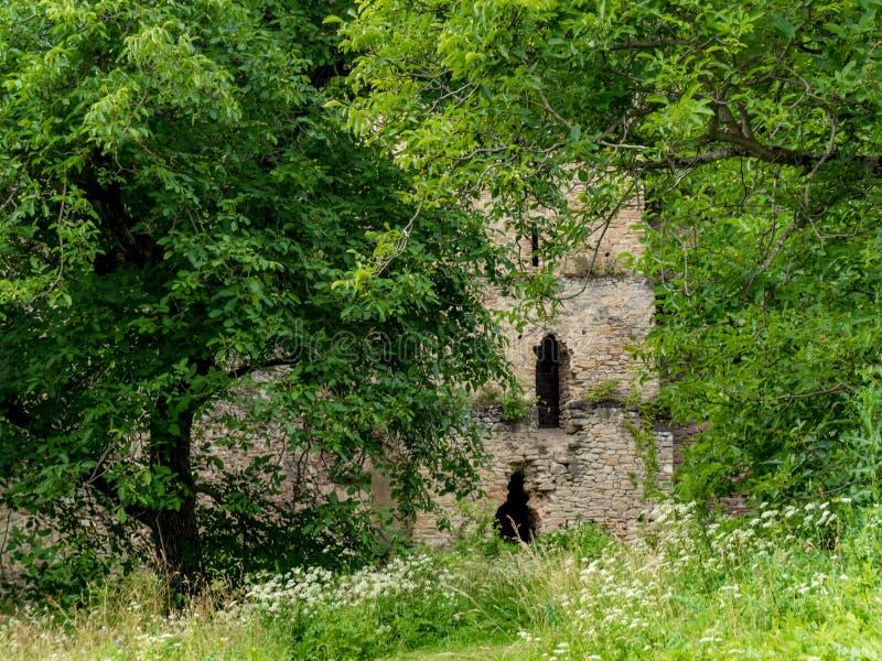 Dentro da fortaleza de Saschiz na Transilvânia perto do Vi saxão fotografia de stock