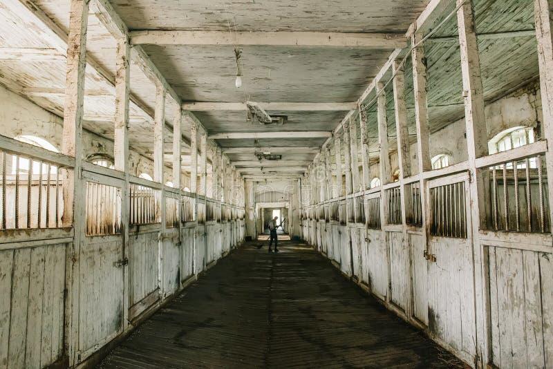 Dentro de establo o de granero de madera viejo con la opinión de las cajas de caballo, del túnel o del pasillo imagen de archivo