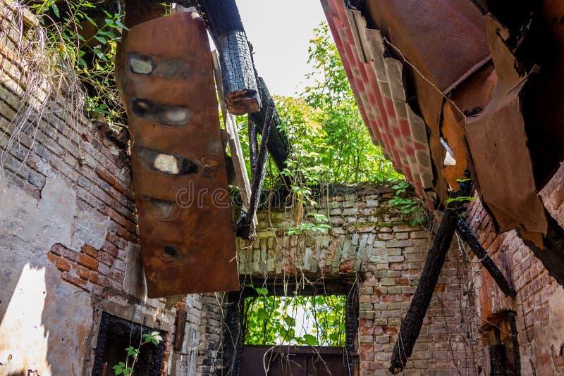 Dentro de uma casa velha do tijolo com um telhado desmoronado após um fogo, arvoredos nas paredes fotos de stock