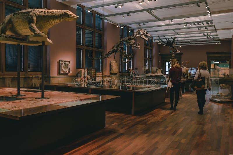 Dentro de un museo fotos de archivo