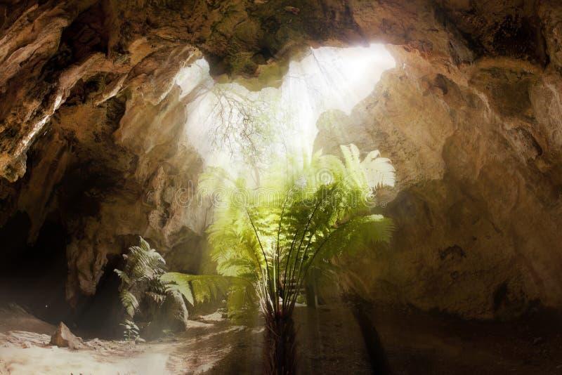 Dentro de una cueva de la piedra caliza fotos de archivo
