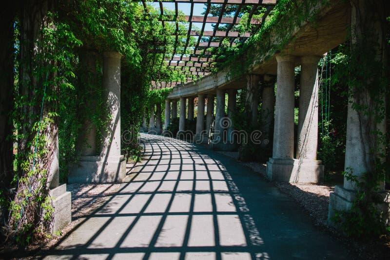 Dentro del parque de la pérgola en Wroclaw, Polonia foto de archivo