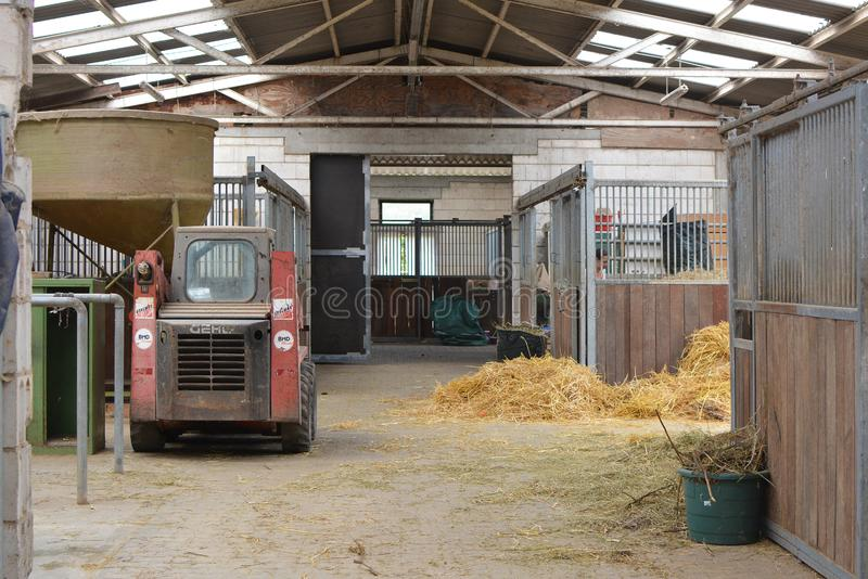 Dentro della stalla animale con le stalle e del fieno per gli animali d'alimentazione fotografie stock libere da diritti