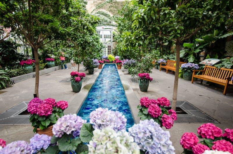 Dentro do jardim botânico do Estados Unidos fotografia de stock royalty free