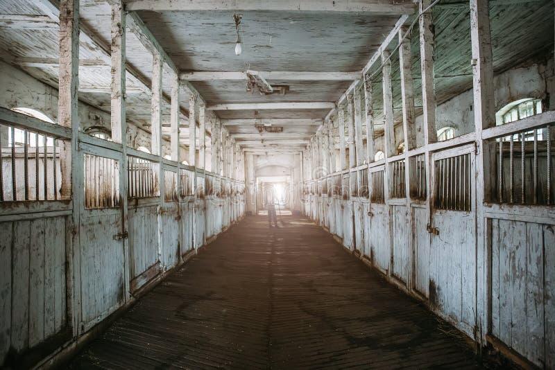 Dentro la vecchia stalla o granaio di legno con la vista delle scatole di cavallo, del tunnel o del corridoio immagini stock
