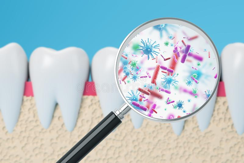 Dents avec la loupe et les bactéries illustration de vecteur