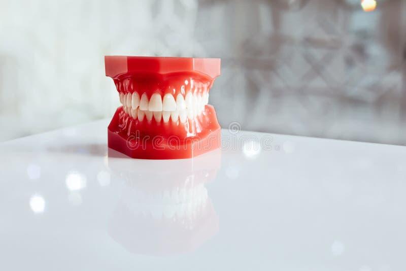 Dents blanches rouges de prosth?tique de m?choire de reproduction de copie de fond de clinique dentaire photo libre de droits