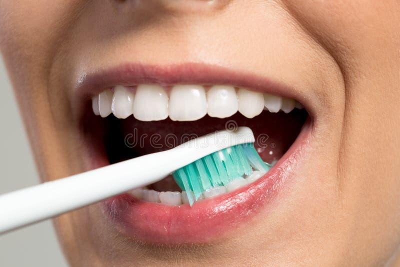 Dents de frottage de fille avec la brosse à dents photographie stock libre de droits