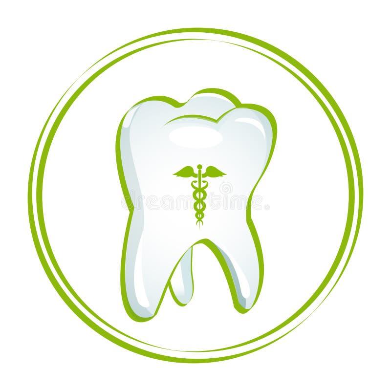 Dents saines illustration stock