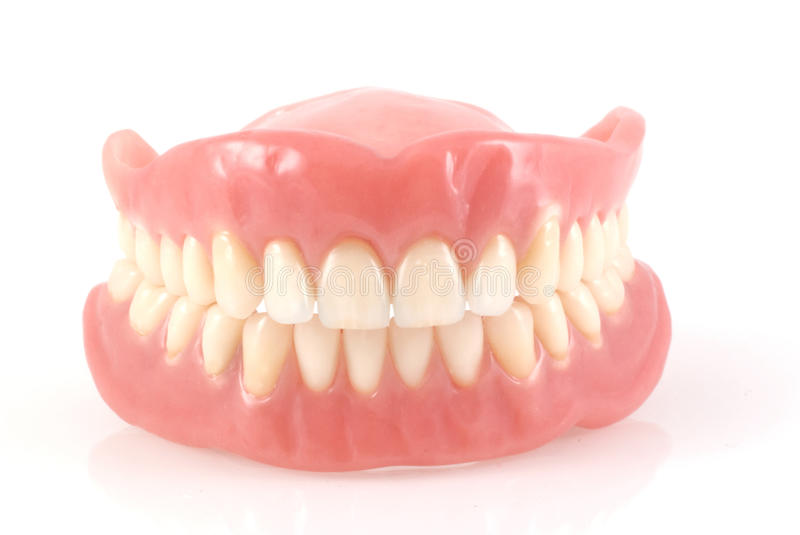 Dentures. stock images