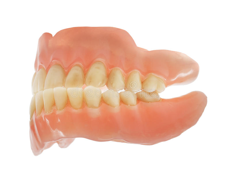dentures obraz royalty free
