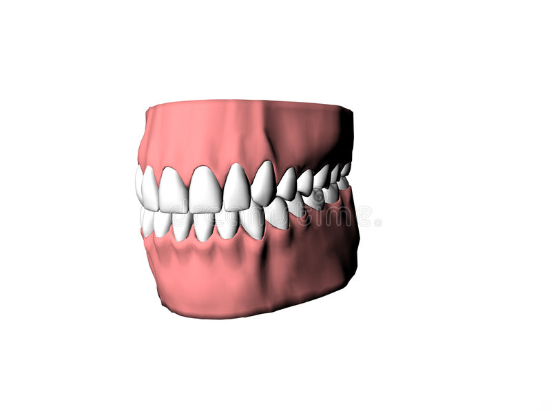 Dentures Illustrated Royalty Free Stock Photography
