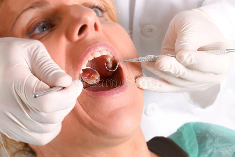 Dentysta egzamininuje kobiety z białymi lateksowymi rękawiczkami obrazy royalty free