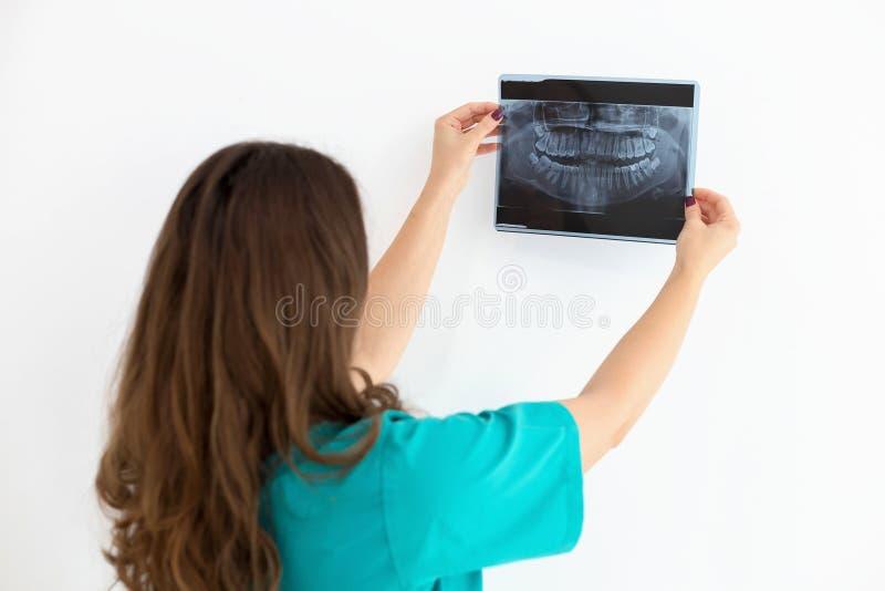 Dentysta pokazuje ona cierpliwego promieniowania rentgenowskiego prześwietlenie fotografia royalty free