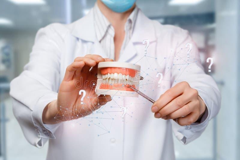 Dentysta wskazuje przy sztucznym szczęka modelem obraz stock