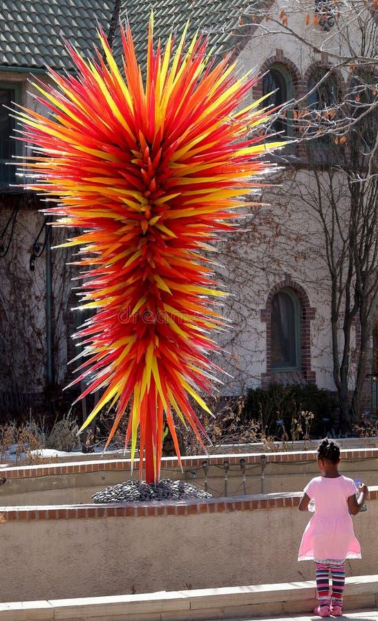 Denver Botanic Gardens En flicka som ser exponeringsglasskulpturen på en dag för fri erkännande arkivbilder