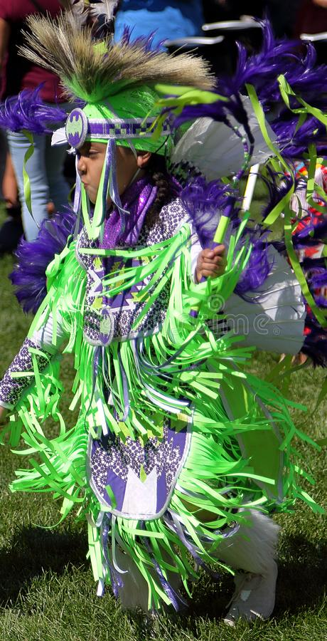 29th Annual Friendship Powwow and American Indian Cultural Celebration royalty free stock photo