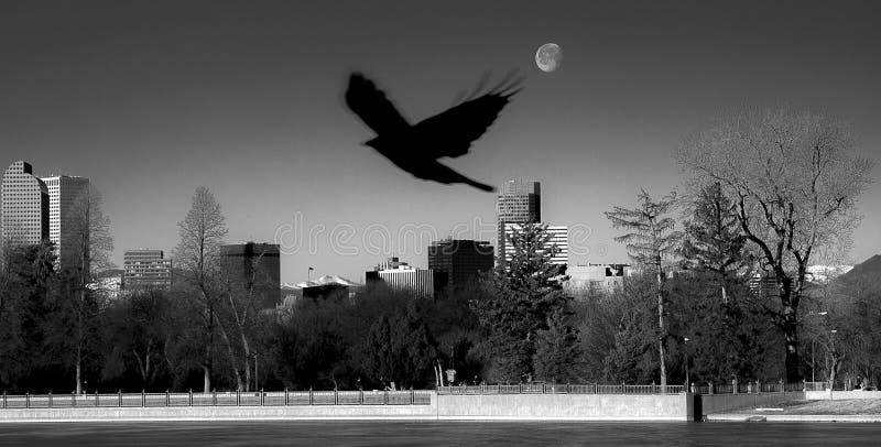 Denver Silhouette con la luna imagen de archivo