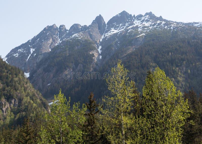 Denver Valley van Alaska royalty-vrije stock foto